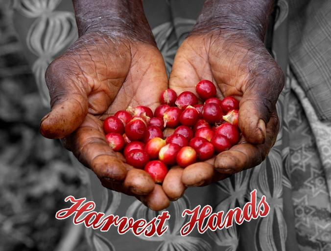 Harvest Hands